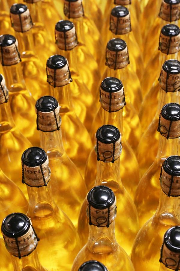 bottiglie vino bianco poderi fiorini modena